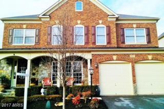 42036 Foley Headwaters Street, Aldie, VA 20105 (#LO9856570) :: LoCoMusings