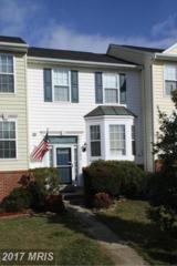 35896 Clover Terrace, Round Hill, VA 20141 (#LO9856929) :: Pearson Smith Realty