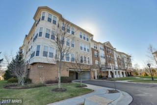 44485 Chamberlain Terrace #107, Ashburn, VA 20147 (#LO9871343) :: Pearson Smith Realty
