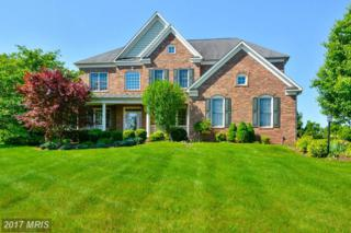 36335 Silcott Meadow Place, Purcellville, VA 20132 (#LO9886710) :: Pearson Smith Realty