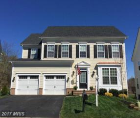 815 Kinvarra Place, Purcellville, VA 20132 (#LO9900645) :: Pearson Smith Realty