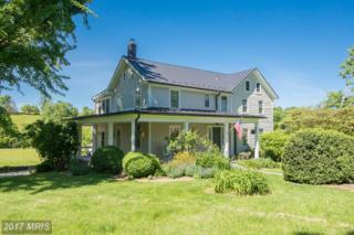 15707 Clarkes Gap Road, Waterford, VA 20197 (#LO9910662) :: Pearson Smith Realty
