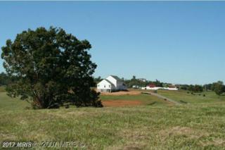 Fieldcrest Court, Aroda, VA 22709 (#MA8273958) :: Pearson Smith Realty