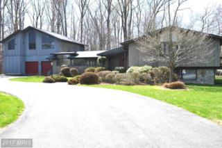 12925 Dalyn Drive, Potomac, MD 20854 (#MC8718798) :: Pearson Smith Realty
