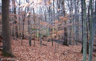 12308 Stoney Creek Road, Potomac, MD 20854 (#MC9614998) :: Pearson Smith Realty
