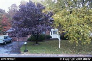 13713 Ivywood Lane, Silver Spring, MD 20904 (#MC9691023) :: Pearson Smith Realty