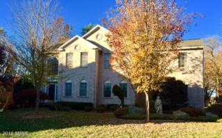 12805 Tern Drive, North Potomac, MD 20878 (#MC9808832) :: Pearson Smith Realty