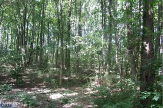 22704 Birchcrest Lane, Clarksburg, MD 20871 (#MC9860228) :: Pearson Smith Realty