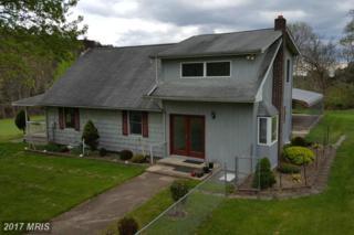 575 Glen Echo Road, Fort Ashby, WV 26719 (#MI9652277) :: Pearson Smith Realty
