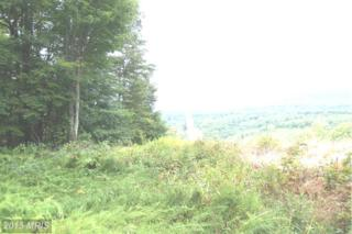 Clay Pitts Lane, Great Cacapon, WV 25422 (#MO8476740) :: Pearson Smith Realty