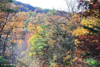 LOT 3 River Road, Paw Paw, WV 25434 (#MO8494987) :: Pearson Smith Realty