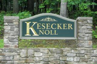 167 Kesecker Knoll Lane, Berkeley Springs, WV 25411 (#MO8576136) :: LoCoMusings
