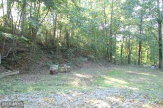 Casler's Addition Dent Hill, Berkeley Springs, WV 25411 (#MO8652202) :: Pearson Smith Realty