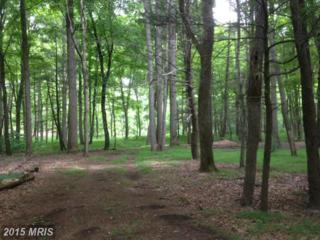 Amberwood, Great Cacapon, WV 25422 (#MO8674664) :: Pearson Smith Realty
