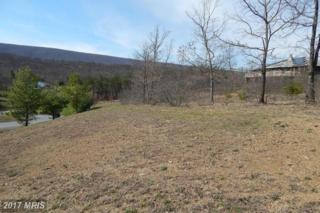1 Cielo Lane, Berkeley Springs, WV 25411 (#MO9612522) :: Pearson Smith Realty