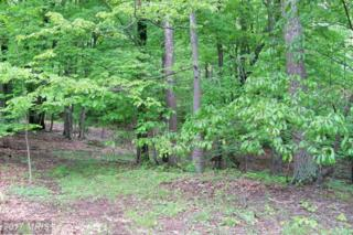 LOT 31 Oak Ridge Lane, Hedgesville, WV 25427 (#MO9664958) :: LoCoMusings