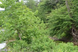 Fern Valley Way, Great Cacapon, WV 25422 (#MO9697028) :: Pearson Smith Realty