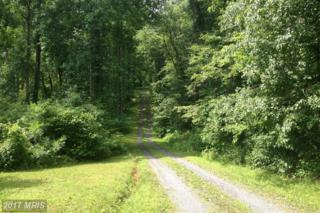 LOT 2 Lahore Road, Orange, VA 22960 (#OR9564976) :: Pearson Smith Realty