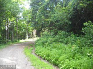 0 Circle Drive, Stanley, VA 22851 (#PA9591915) :: Pearson Smith Realty