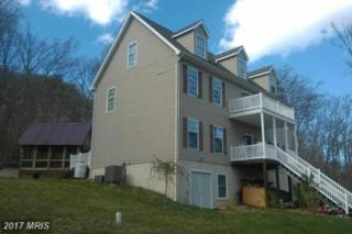 102 Forest Ext Drive, Luray, VA 22835 (#PA9616603) :: LoCoMusings
