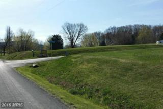 338 Springfield Estates Drive, Rileyville, VA 22650 (#PA9628071) :: Pearson Smith Realty