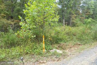 150 Lake Drive, Luray, VA 22835 (#PA9755178) :: Pearson Smith Realty