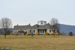 1050 Parkview Estates Road, Luray, VA 22835 (#PA9760444) :: Pearson Smith Realty