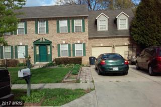 9009 Dangerfield Place, Clinton, MD 20735 (#PG8738245) :: Pearson Smith Realty