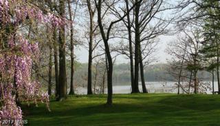 517 Broad Creek Drive, Fort Washington, MD 20744 (#PG8755569) :: LoCoMusings