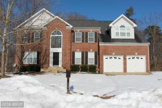 14900 River Chase Court, Bowie, MD 20715 (#PG9579442) :: Pearson Smith Realty