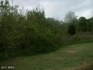 15108 Brandywine Road, Brandywine, MD 20613 (#PG9588370) :: LoCoMusings