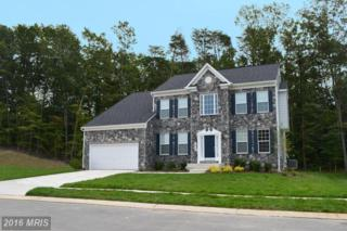 12205 Wallace Landing Court, Upper Marlboro, MD 20772 (#PG9631866) :: Pearson Smith Realty