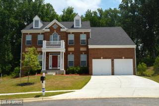 12207 Wallace Landing Court, Upper Marlboro, MD 20772 (#PG9632313) :: Pearson Smith Realty