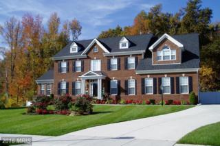 9009 Wild Acre Court, Upper Marlboro, MD 20772 (#PG9653142) :: Pearson Smith Realty