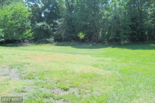 7107 Meadow Rue Terrace, Upper Marlboro, MD 20772 (#PG9670396) :: Pearson Smith Realty