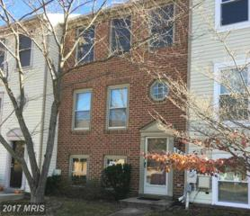 3802 Envision Terrace, Bowie, MD 20716 (#PG9819849) :: LoCoMusings