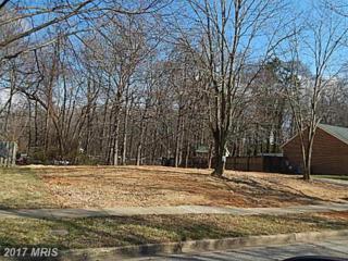 12306 Proxmire Drive, Fort Washington, MD 20744 (#PG9830285) :: LoCoMusings