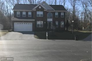 8301 Cedarview Court, Clinton, MD 20735 (#PG9830466) :: LoCoMusings
