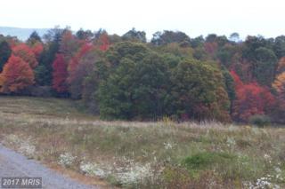 58 Snowy Creek Lane, Corinth, WV 26764 (#PR8376517) :: Pearson Smith Realty