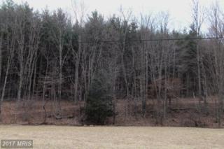 59 Snowy Creek Lane, Corinth, WV 26764 (#PR8376552) :: Pearson Smith Realty