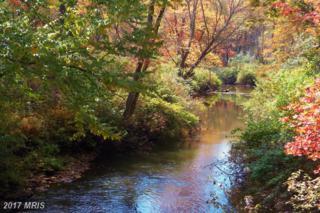 2930-LOTS Mountain Laurel Way, Corinth, WV 26764 (#PR9510781) :: Pearson Smith Realty