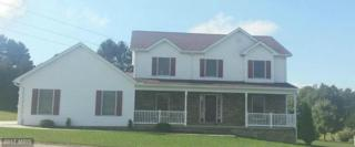 55 Horseshoe Drive W, Bruceton Mills, WV 26525 (#PR9781088) :: LoCoMusings