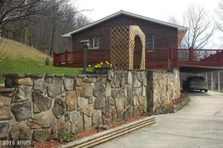 1472 Briary Gap Road, Riverton, WV 26814 (#PT9604947) :: Pearson Smith Realty