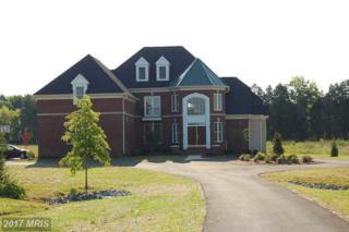 10890 Meadow Walk Lane, Bristow, VA 20136 (#PW9585005) :: LoCoMusings