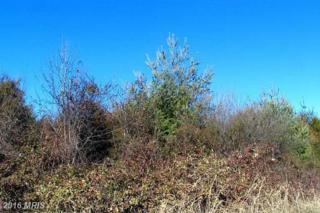 8601 Birmingham Drive, Manassas, VA 20111 (#PW9735350) :: Pearson Smith Realty