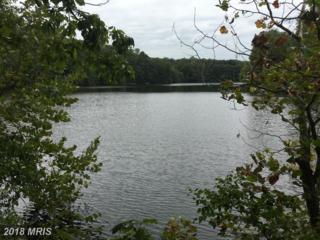 8090 Longtree Road, Manassas, VA 20112 (#PW9768865) :: Pearson Smith Realty