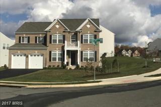 15639 Habitat Court, Woodbridge, VA 22193 (#PW9820458) :: Pearson Smith Realty