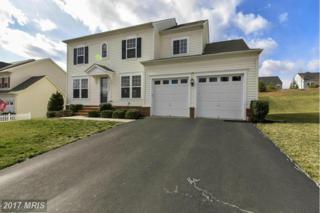 16464 Chattanooga Lane, Woodbridge, VA 22191 (#PW9852792) :: LoCoMusings