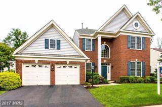 5141 Faldo Drive, Haymarket, VA 20169 (#PW9917584) :: Pearson Smith Realty
