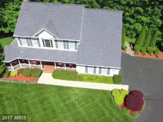 12854 Dusty Willow Road, Manassas, VA 20112 (#PW9934621) :: Pearson Smith Realty